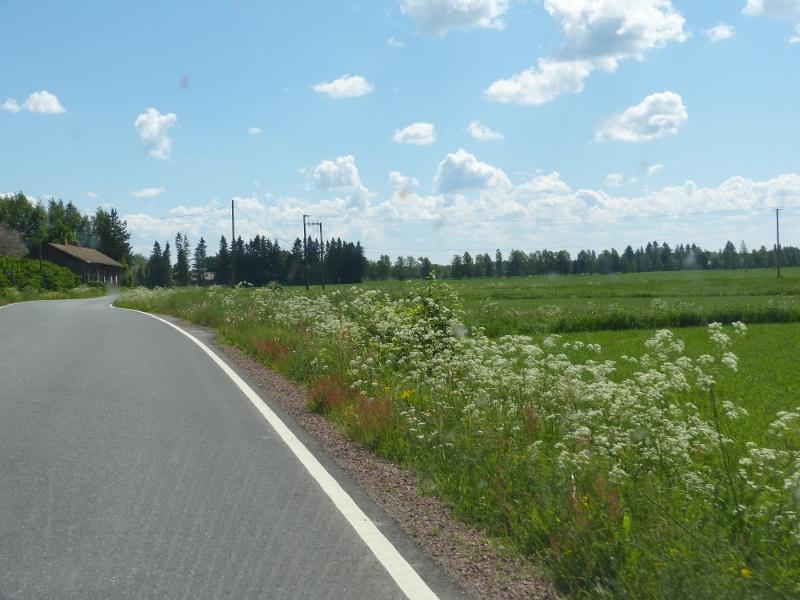 Suomen kesä.