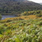 Glendalough Irlanti