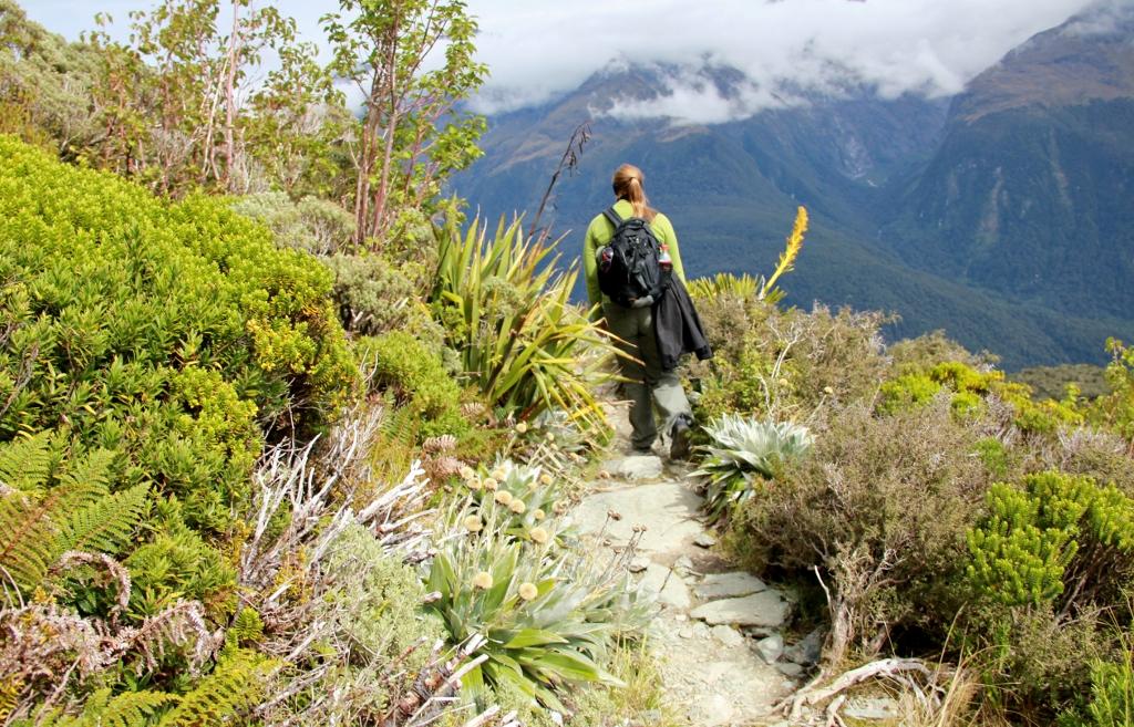 Uuden-Seelannin Eteläsaari