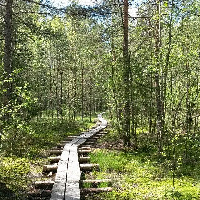 Maununneva, Helsinki, Suomi