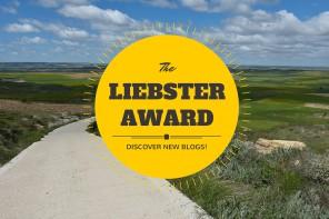 Liebster Award - 11 matkatarinaa