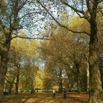 Green Park, Lontoo, UK
