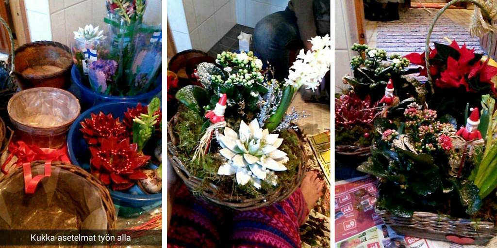 Kukka-asetelmia jouluksi