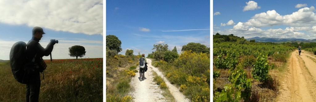 Camino de Santiago - matkakumppani