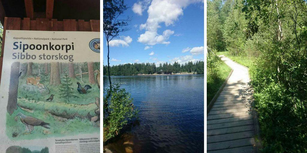 Kuusijärvi